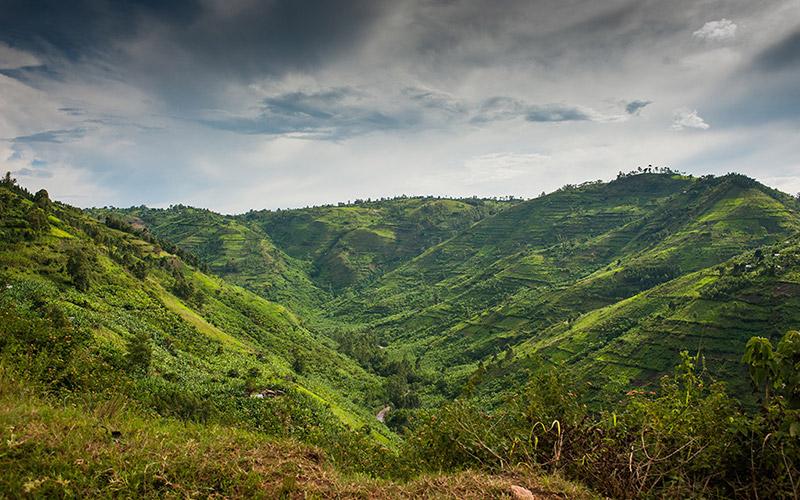 AMT Congo